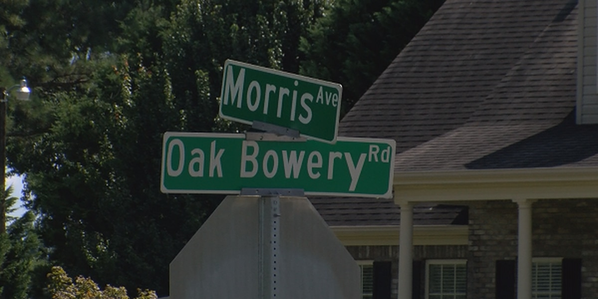 Opelika reduces scope of I-85 connector project