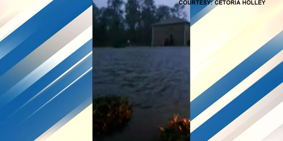 Grandmother escapes Sally flooding carrying grandson in Fla.