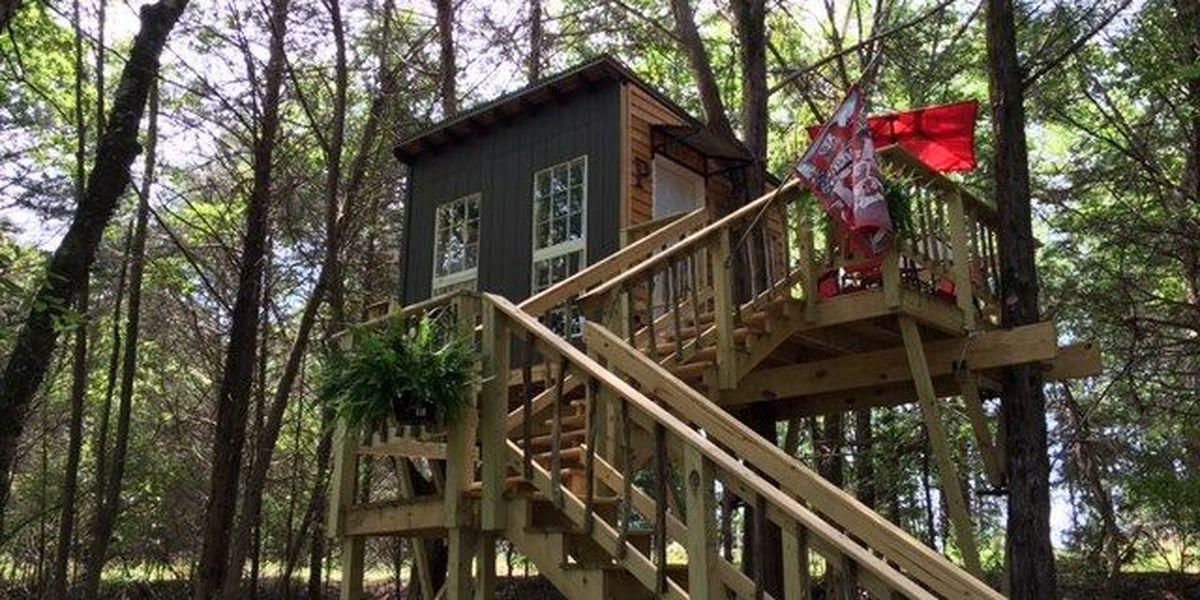 Romantic couple builds super size tree house