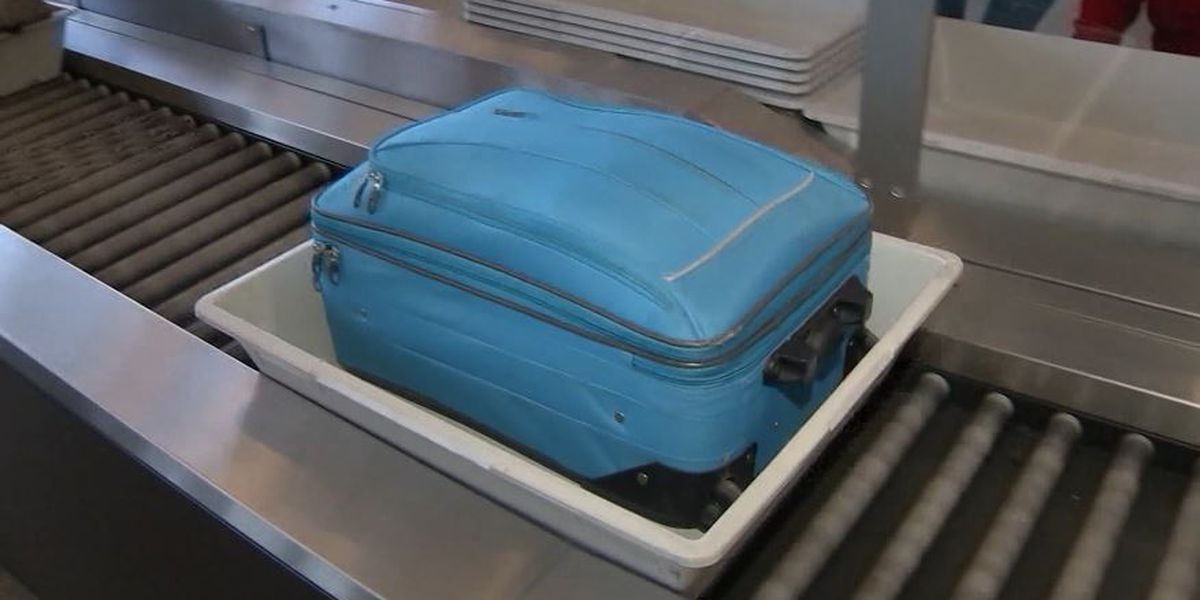 Scientists say airport security bins carry more germs than the toilets