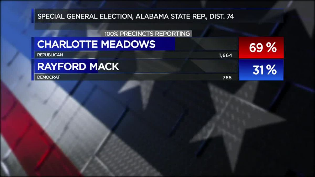 Charlotte Meadows wins State House District 74 special election