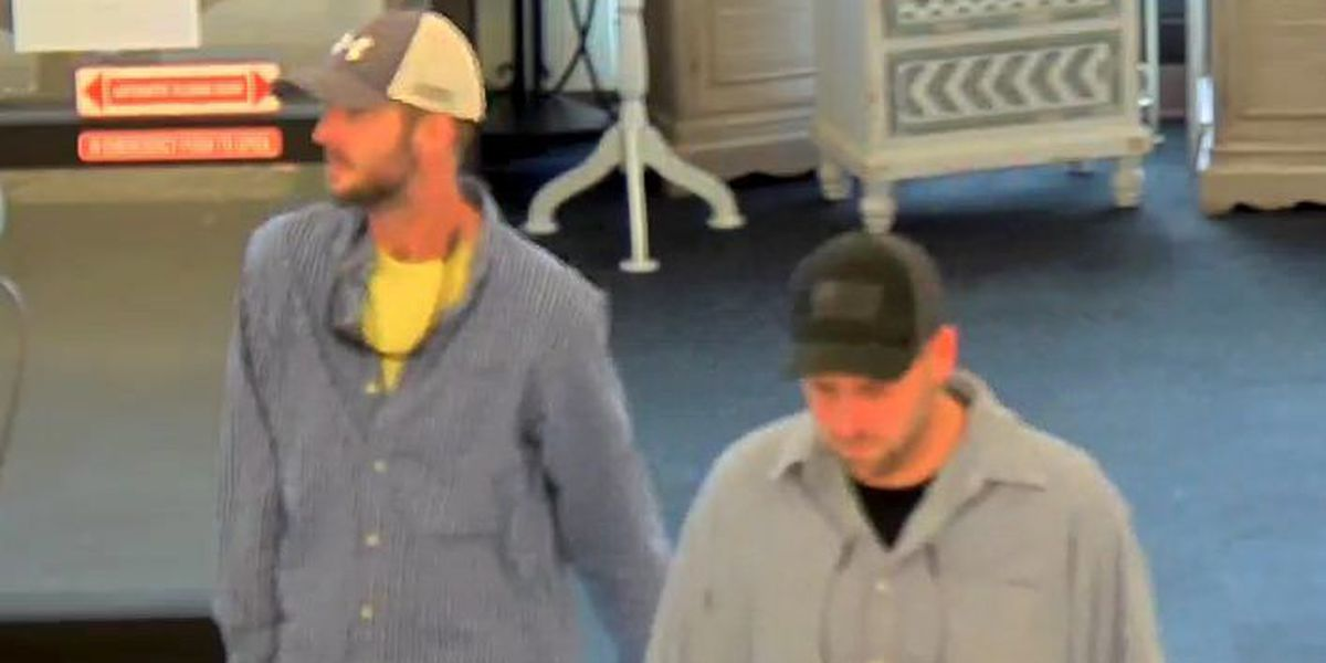Suspects sought in Eastchase Hobby Lobby theft investigation