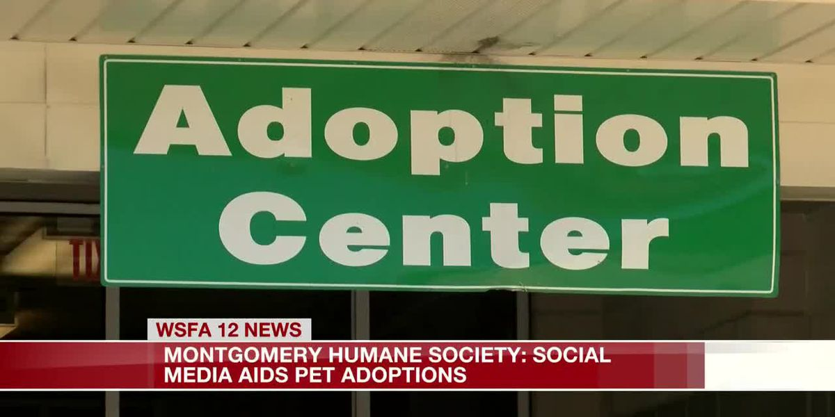 Social media aids in Montgomery Humane Society adoptions
