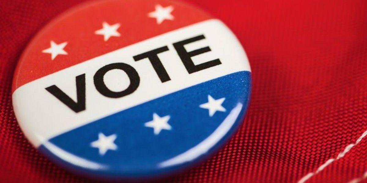AL voters okay amendments on display of Ten Commandments
