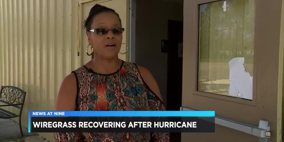 Wiregrass recovering after hurricane