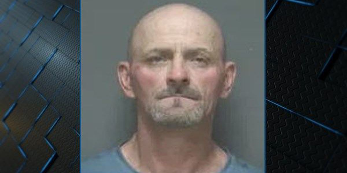 Dothan man arrested for over 40 counts of breaking, entering