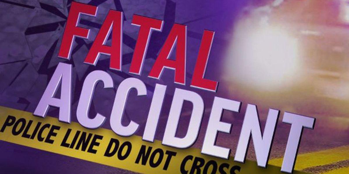 Hayneville man killed after veering off road