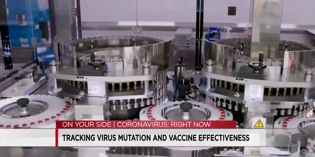 COVID virus mutation explained and how it affects the vaccine