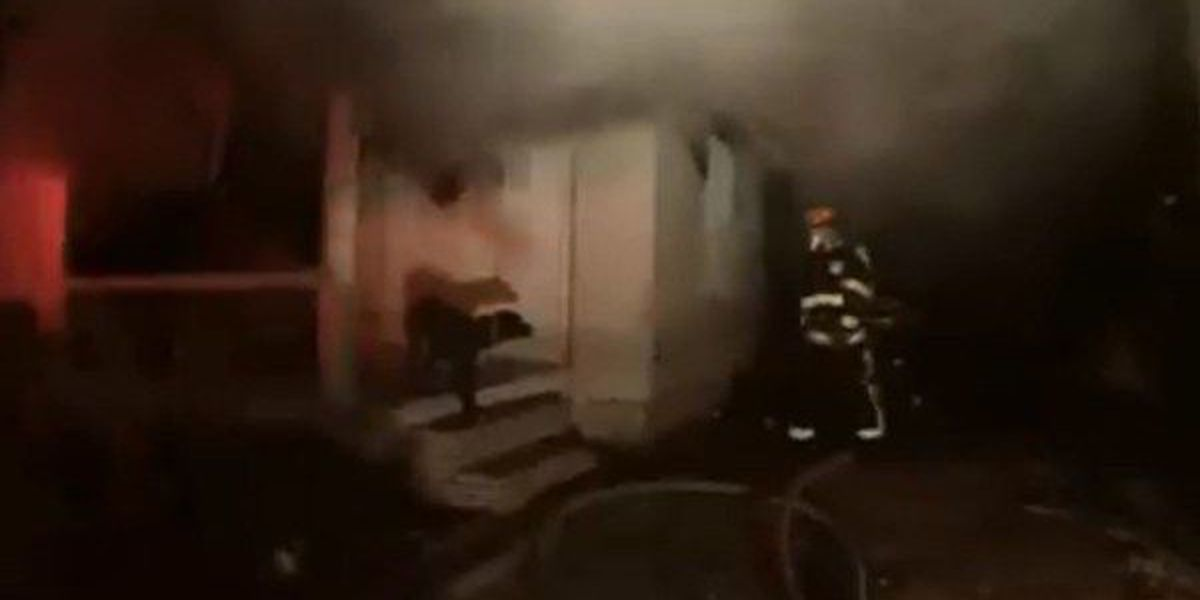 Montgomery firefighter coaxes dog out of burning home