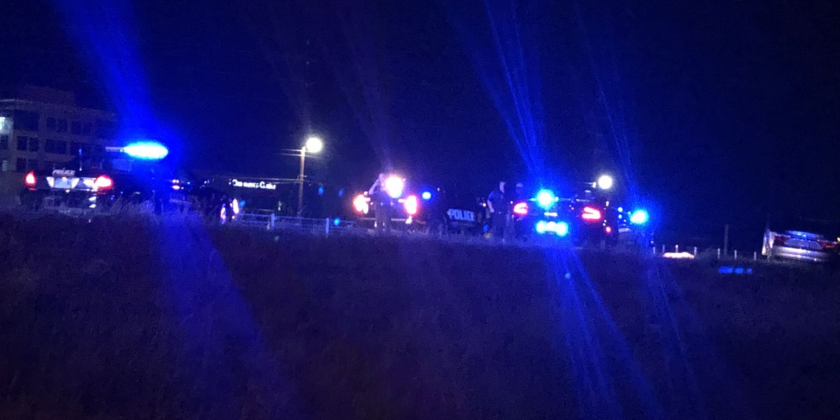 Pedestrian killed in crash near I-85 NB/Chantilly Parkway