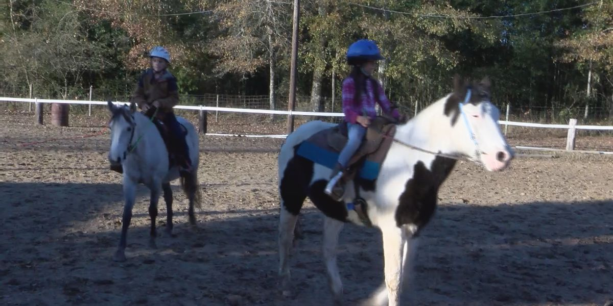 TROT provides therapeutic experiences through horseback riding
