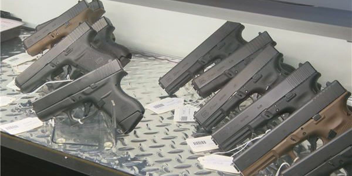Firearm commission takes aim at pros, cons of permitless carry