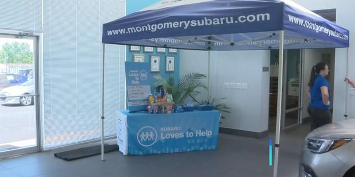 'Stuff the Subaru' drive supports Montgomery's Child Protect