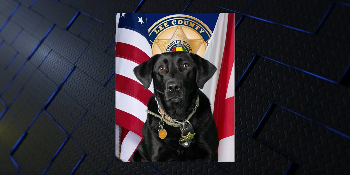 Lee Co. Sheriff's Office K9 loses battle with cancer