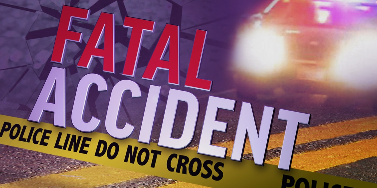 Auburn teen dies in fatal late-night single-vehicle accident on Lee Rd. 81