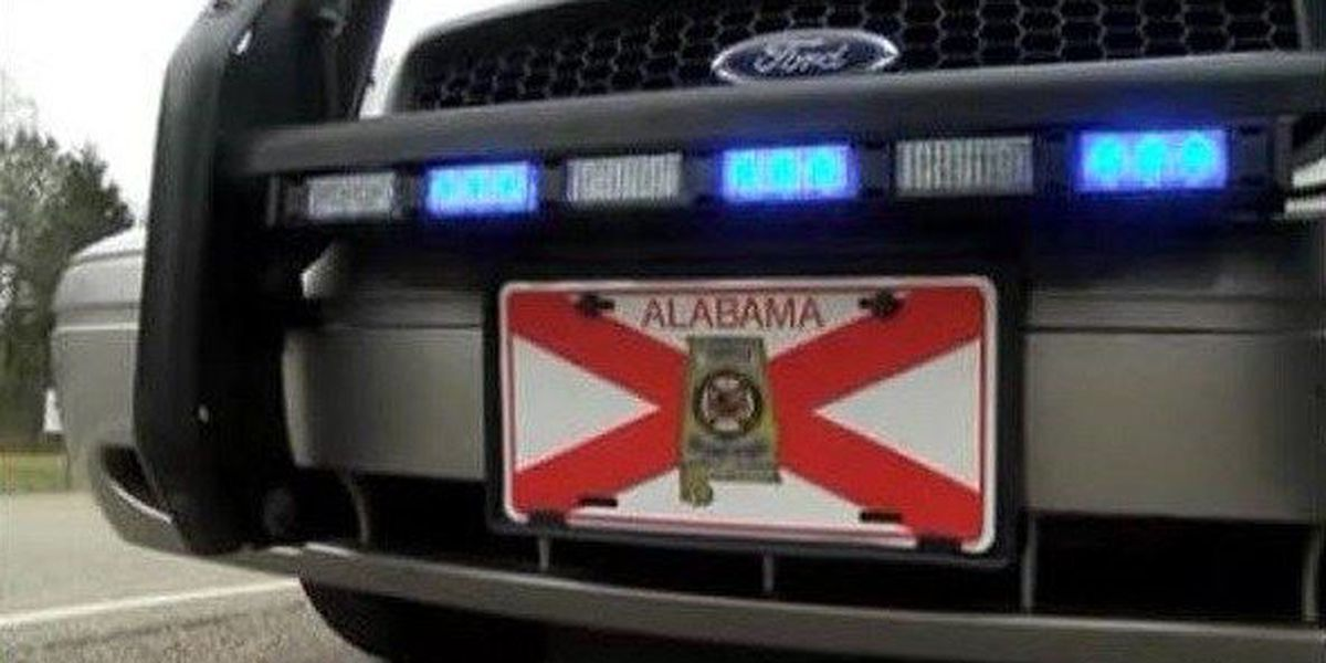 Pedestrian killed after being struck by vehicle in Chilton County