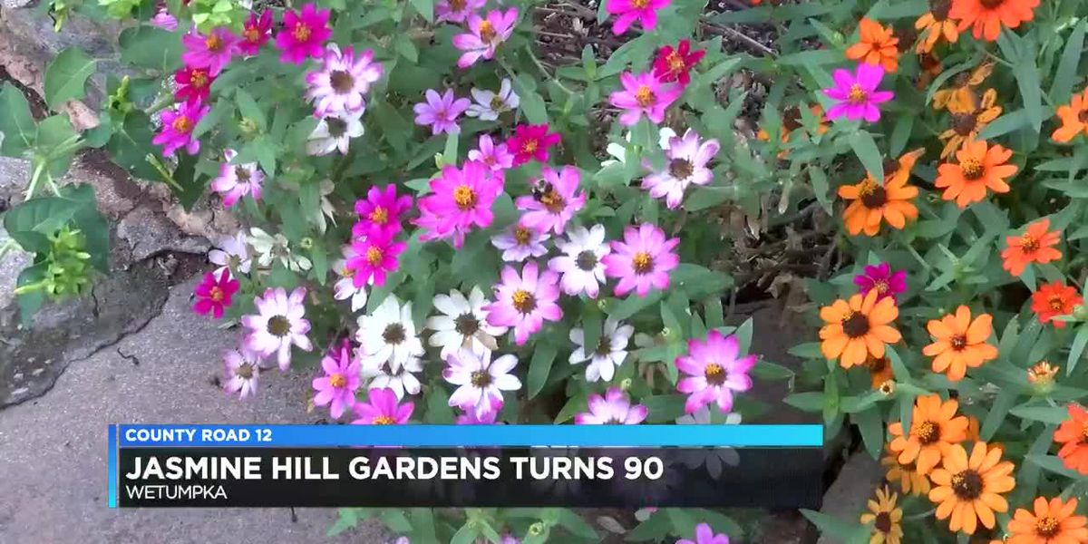 County Road 12: Jasmine Hill turns 90