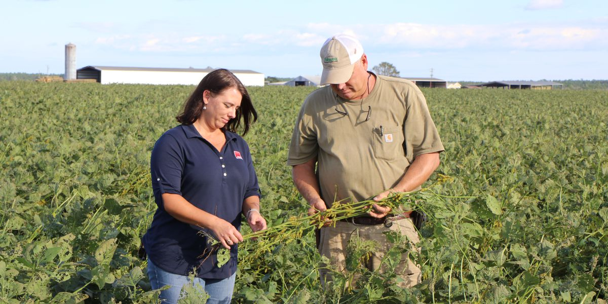 Alabama farms take beating from Hurricane Sally, farmers predict major crop losses