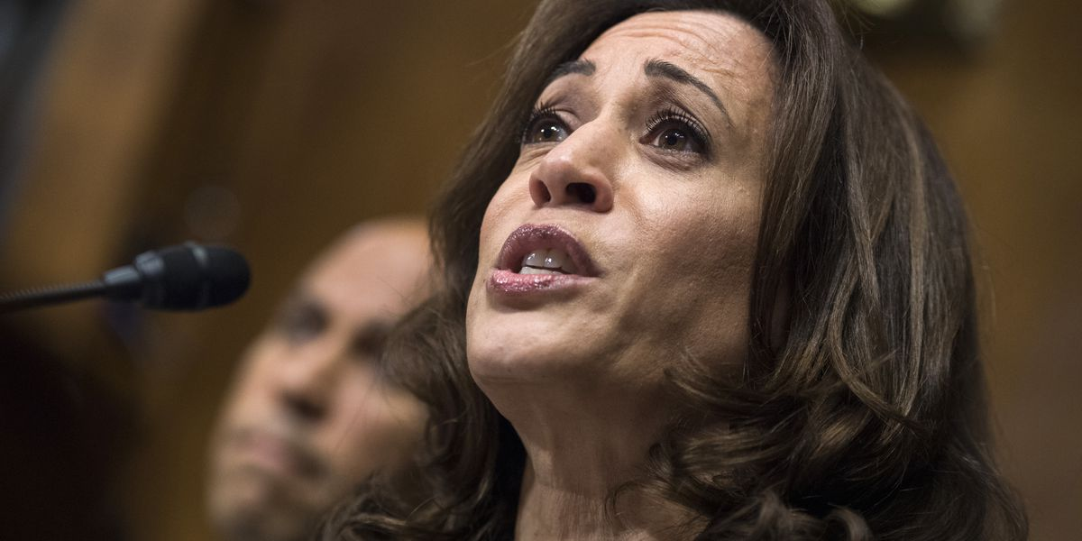 Kamala Harris announces she will run for president