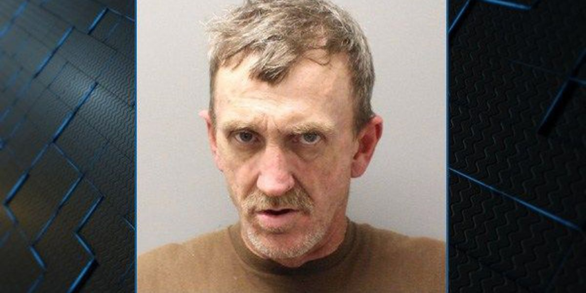 Banks man facing felony charges after fleeing from Troy police