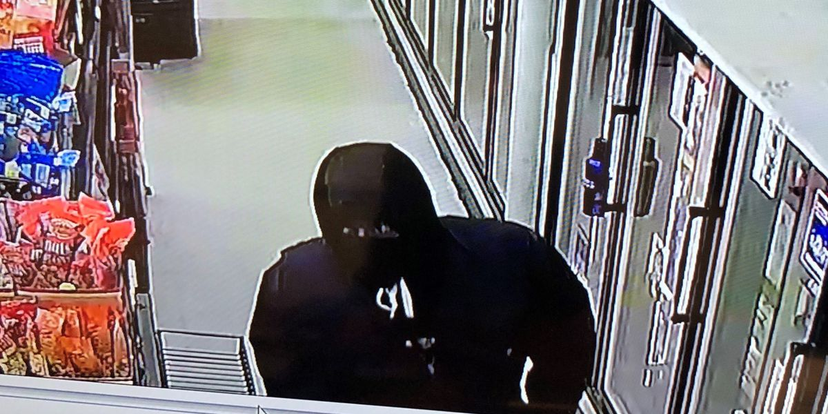 Troy police searching for armed robbery suspect