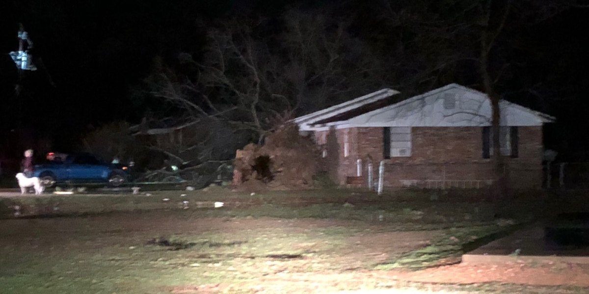 """""""I didn't want to die"""": woman recalls being pinned under tree, brick wall during Calhoun Co. storms"""