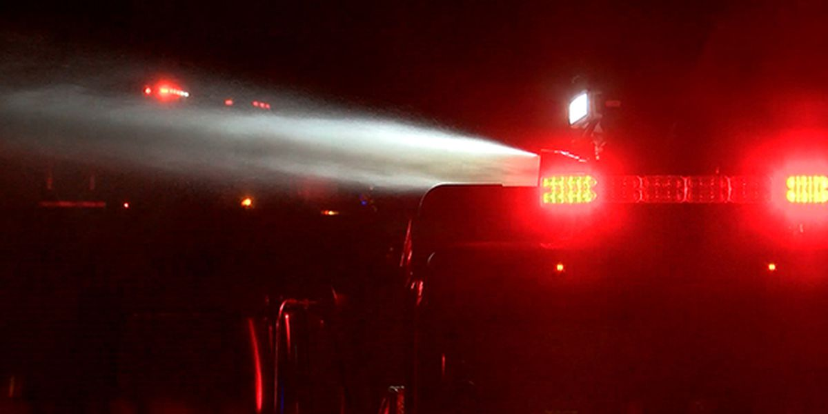 Dothan man killed in Slocomb house fire