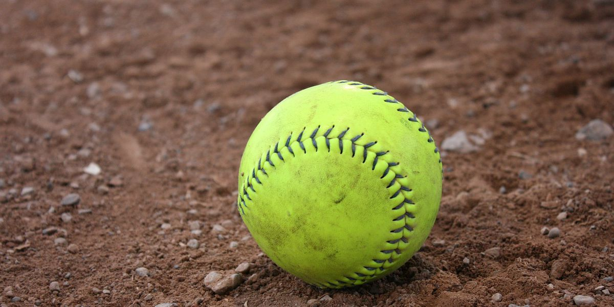 2 coaches kicked out of Dixie Softball state tourney after fight