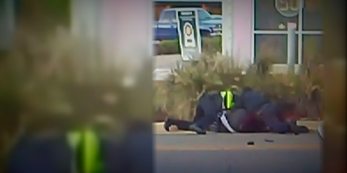 Tuscaloosa police investigating viral video of officers appearing to beat woman during traffic stop arrest