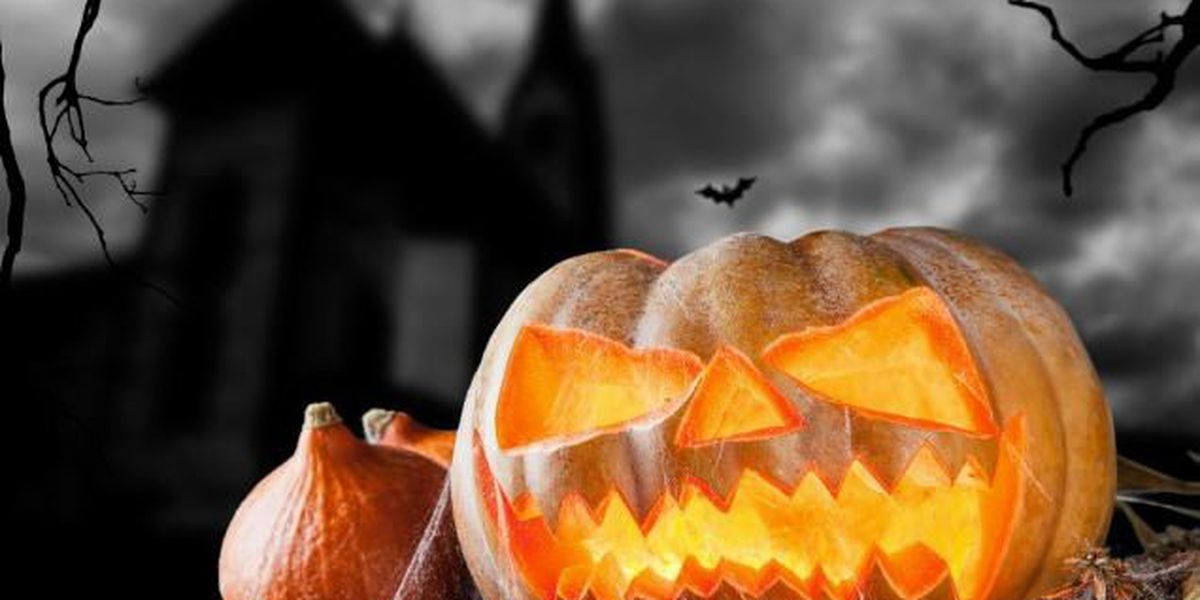 It's Halloween! Are you ready? We've got easy DIY costumes and safety tips on TIA