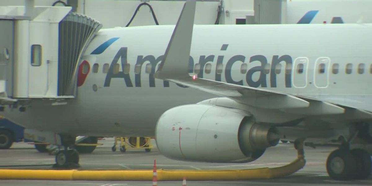 More than a dozen passengers taken to hospital after falling ill on flight to Boston
