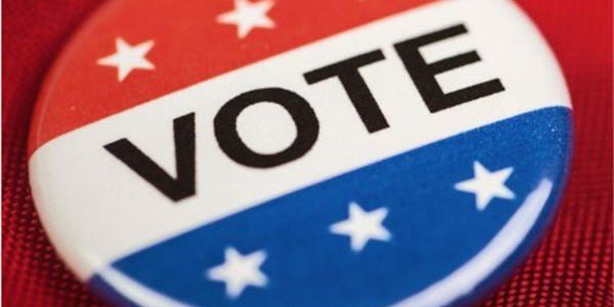 Ivey extends voter registration deadline for senate run-off election