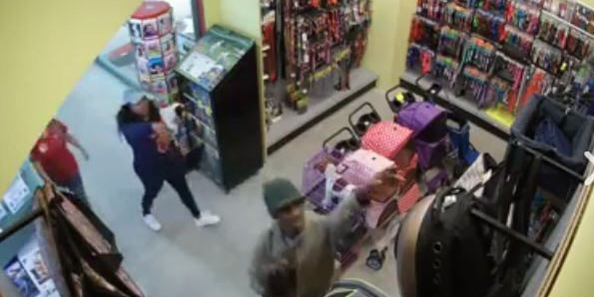 Video shows theft of puppies from Montgomery pet store