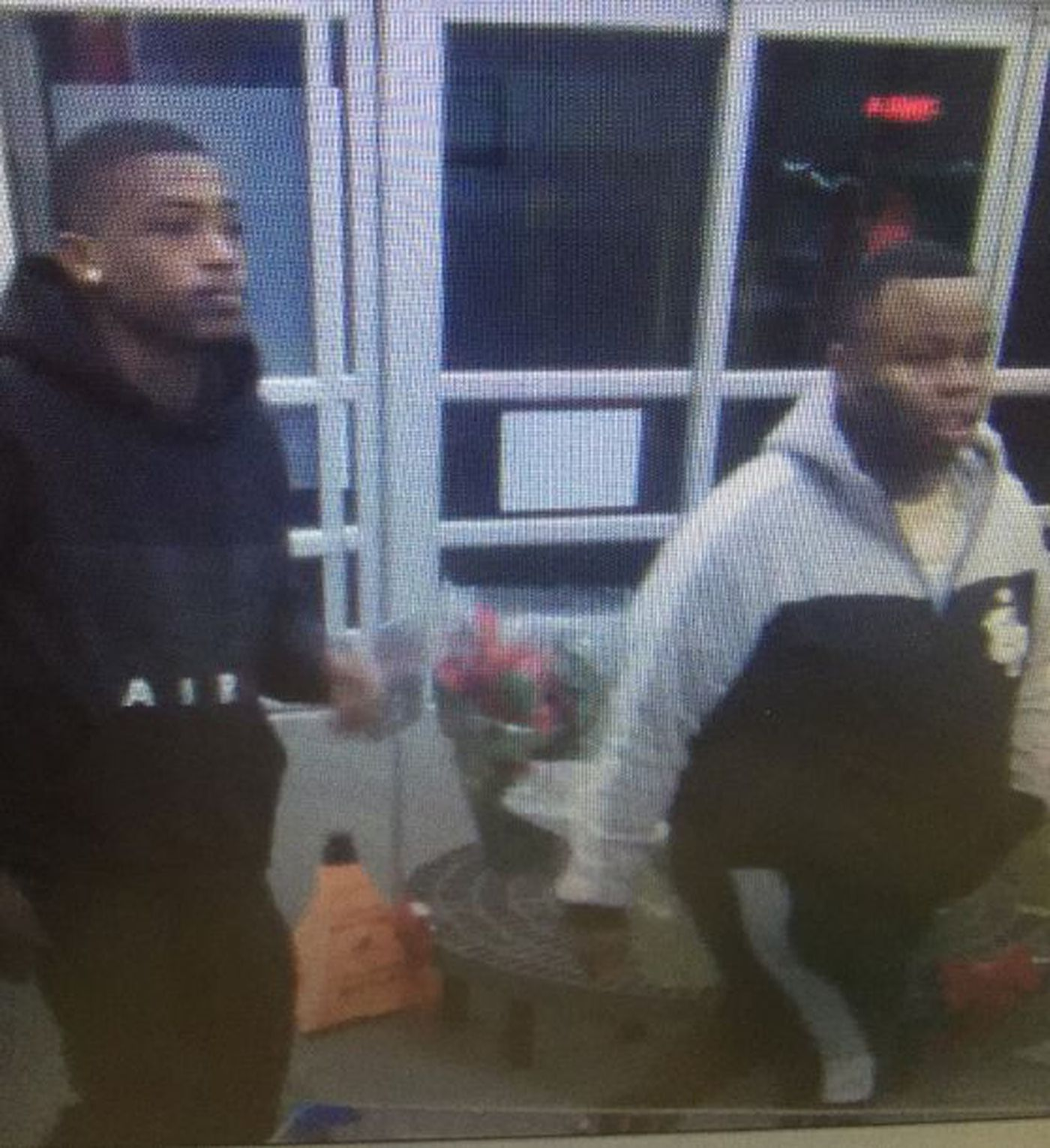 Troy police searching for theft suspects