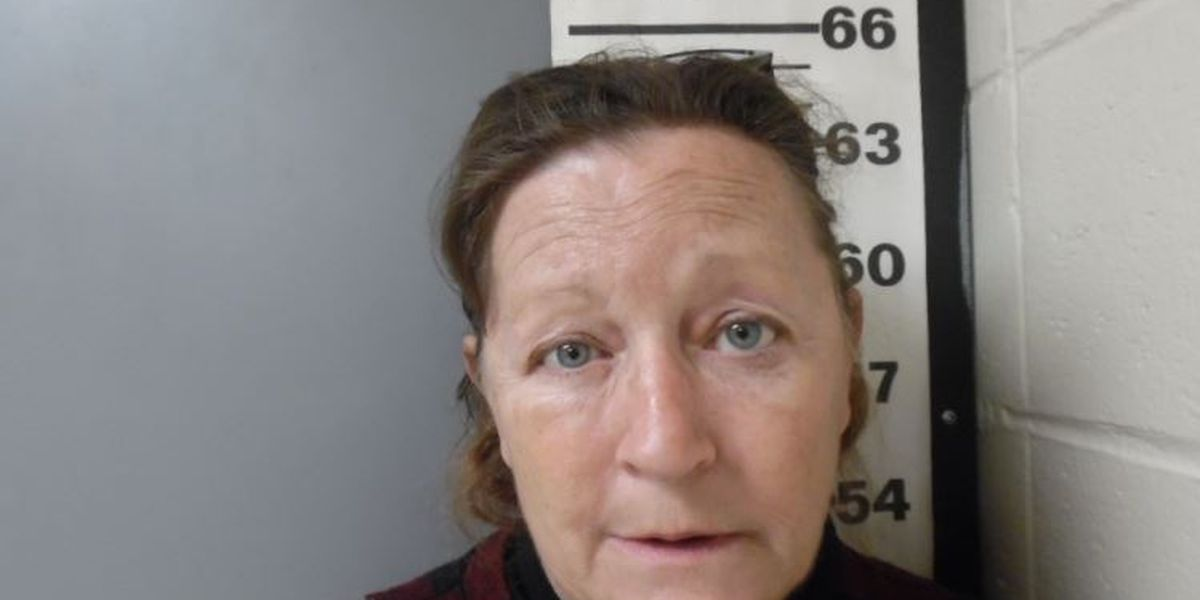Woman pleads guilty to passing contraband to inmate