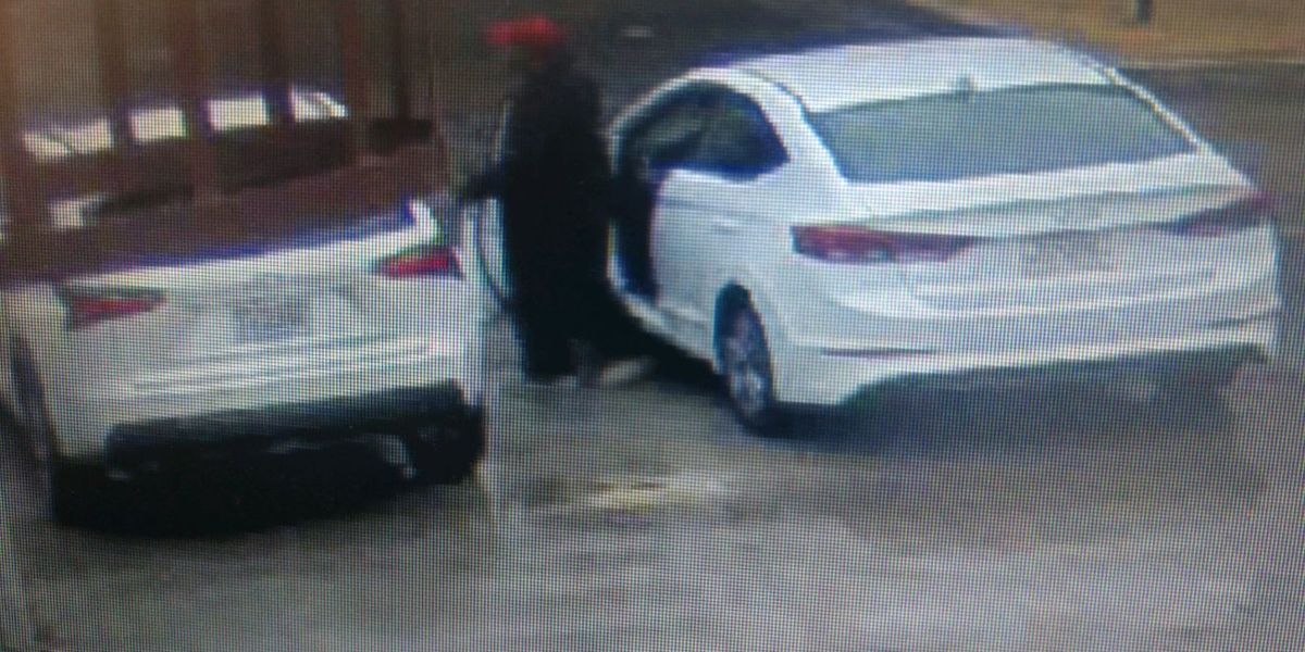 2 suspects wanted for vehicle break-in
