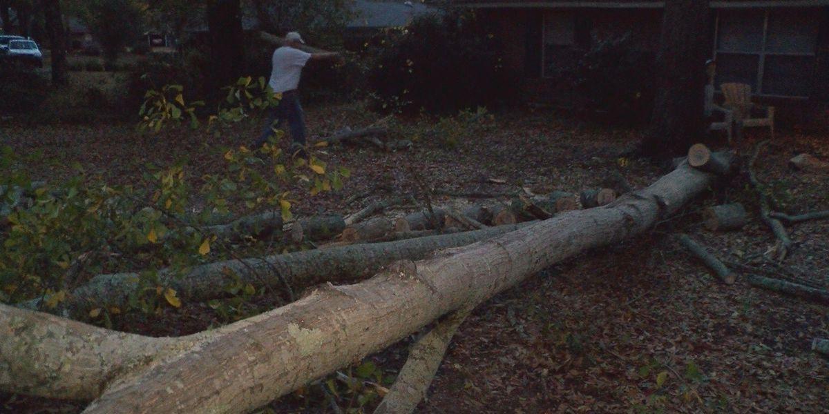 First rainfall in months creates hazards in central Alabama