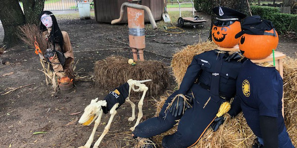 County Road 12: Montgomery Zoo scarecrow takeover
