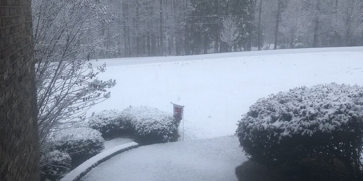 Gallery: Viewers share photos from snow day in West Ala.