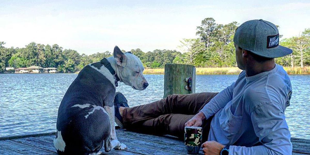 AL Marine Corps vet still searching for missing support dog