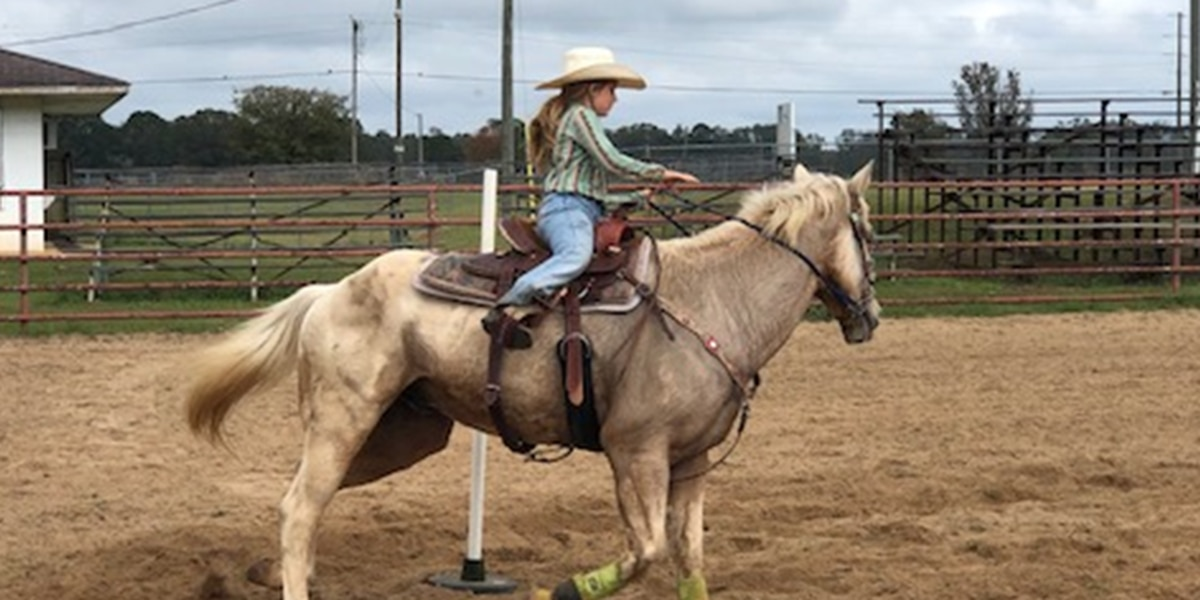 County Road 12: Alabama Junior Rodeo comes to Luverne