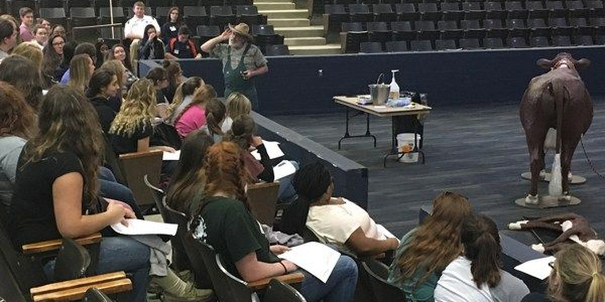 Over 700 students attend pre-veterinarian symposium at Auburn