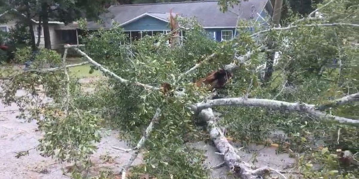Assessment, cleanup underway in SE Alabama after Michael