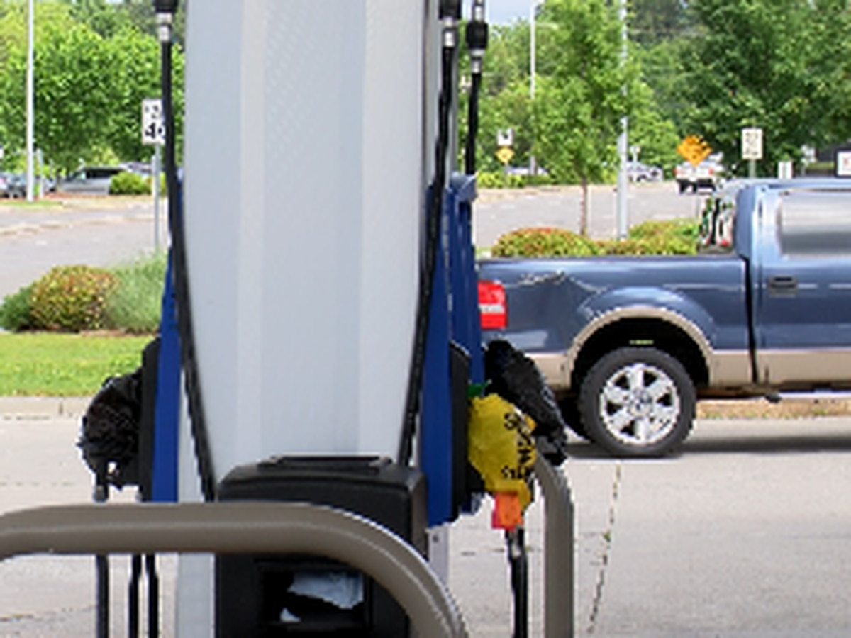 'Fuel is coming,' expert says as people panic buy gas