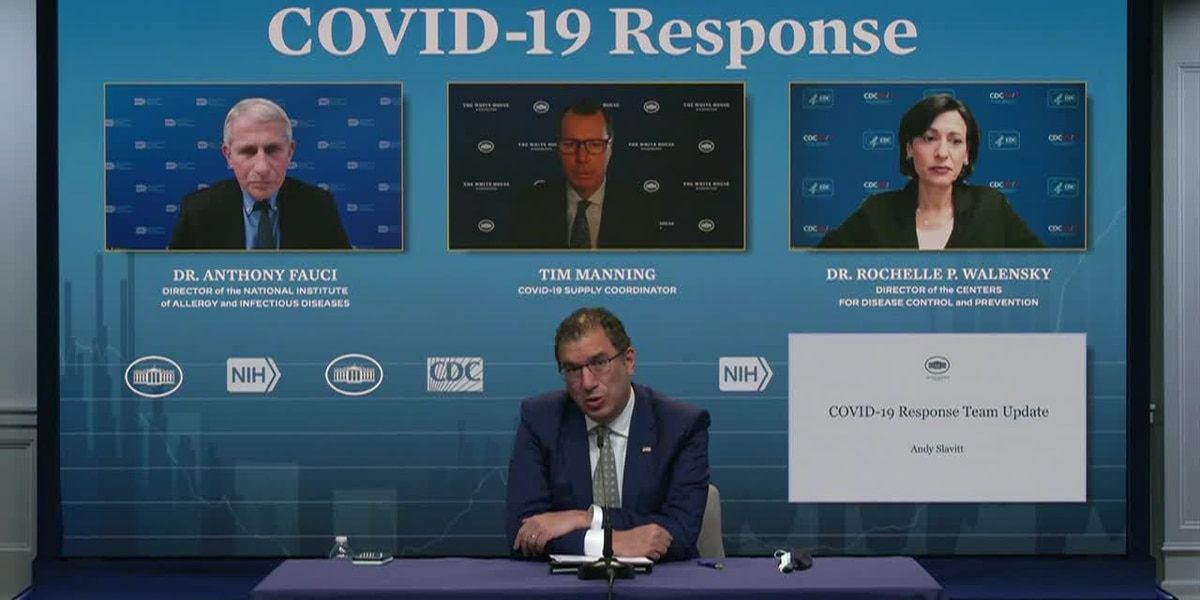 LIVE: WH COVID response team briefing