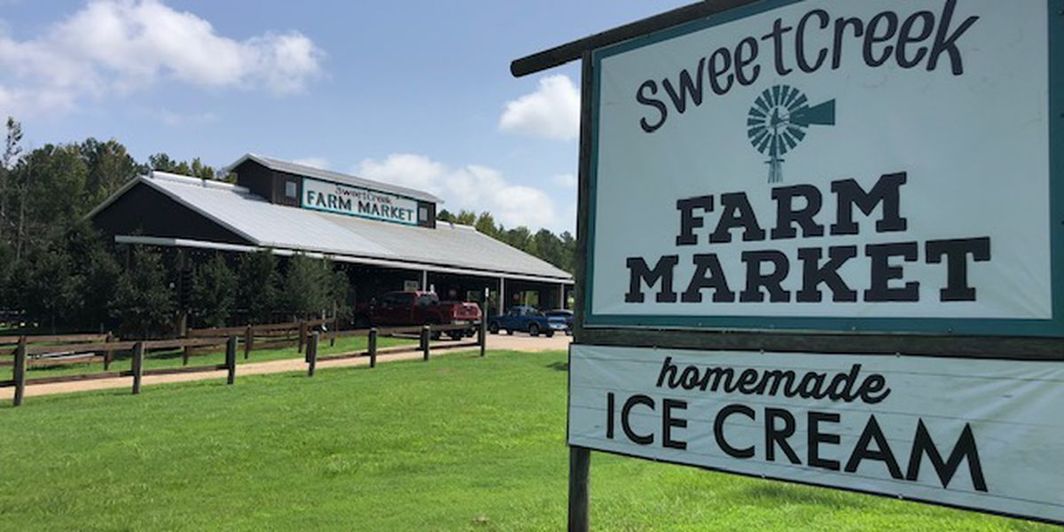 Sweet Creek Farm Market: Food and fun in Pike Road